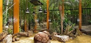 Michaux Eric - Animaux, zoo, élevages